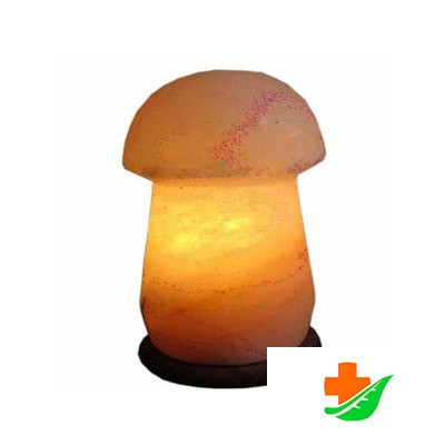 Солевая лампа ZENETгриб малый SLMU-41S (2-3кг) в Барнауле