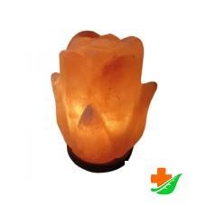 Солевая лампа WONDER LIFE Цветок